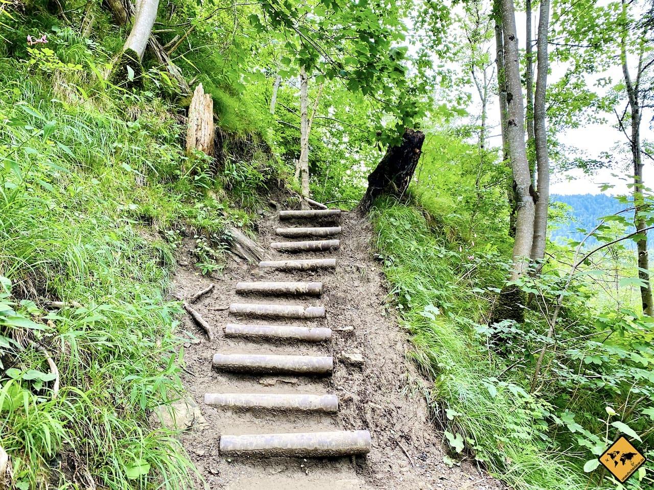Abstieg Treppen Buchenegger Wasserfälle Oberstaufen