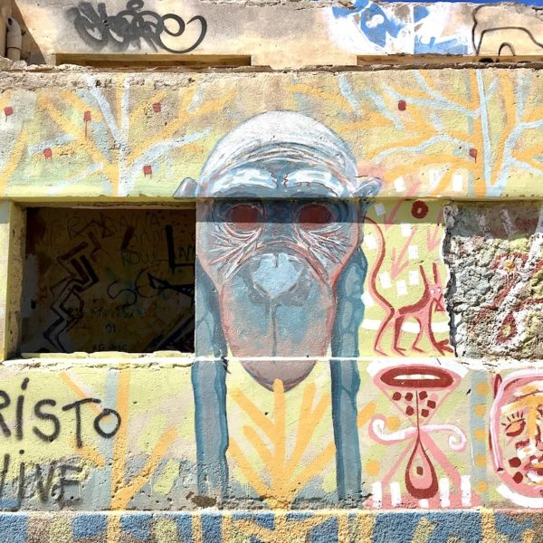 Affe Graffiti Abades Teneriffa Geisterstadt