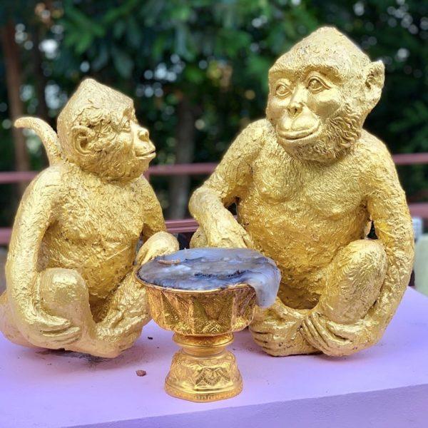 Affen Staturen Monkey Hill Phuket
