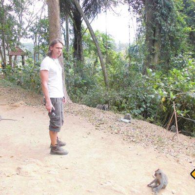 Affen als Weggefährten im Monkey Forest Ubud