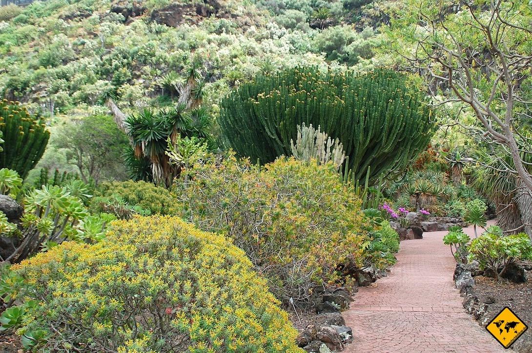 Aktivitäten auf Gran Canaria Spaziergang Jardín Canario