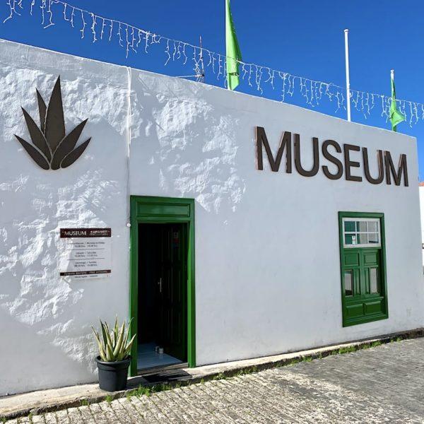 Aloe Vera Museum Teguise Lanzarote