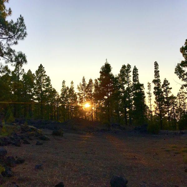 Arenas Negras Chinyero Sonnenuntergang