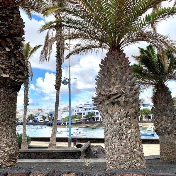 Arrecife Charco de San Ginés Palmen