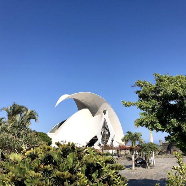 Auditorium Santa Cruz de Tenerife Bäume