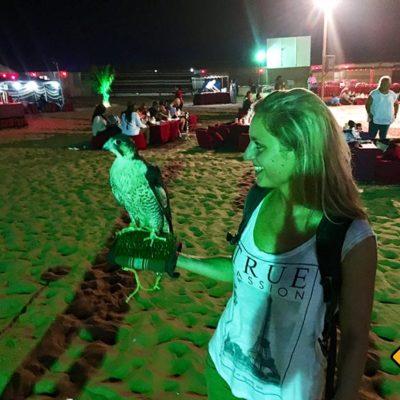 Auf der Dubai Wüstensafari ist auch ein Falke dabei
