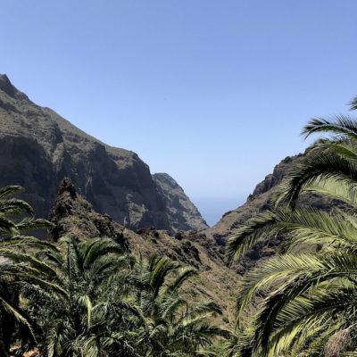 Der Ausblick in die Masca Schlucht Teneriffa ist die schwierige Anfahrtsstrecke auf jeden Fall wert