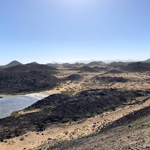 Ausflüge ab Lanzarote: Isla de Lobos