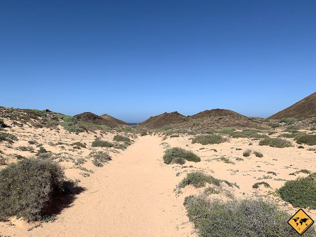Ausflüge von Fuerteventura Isla de Lobos