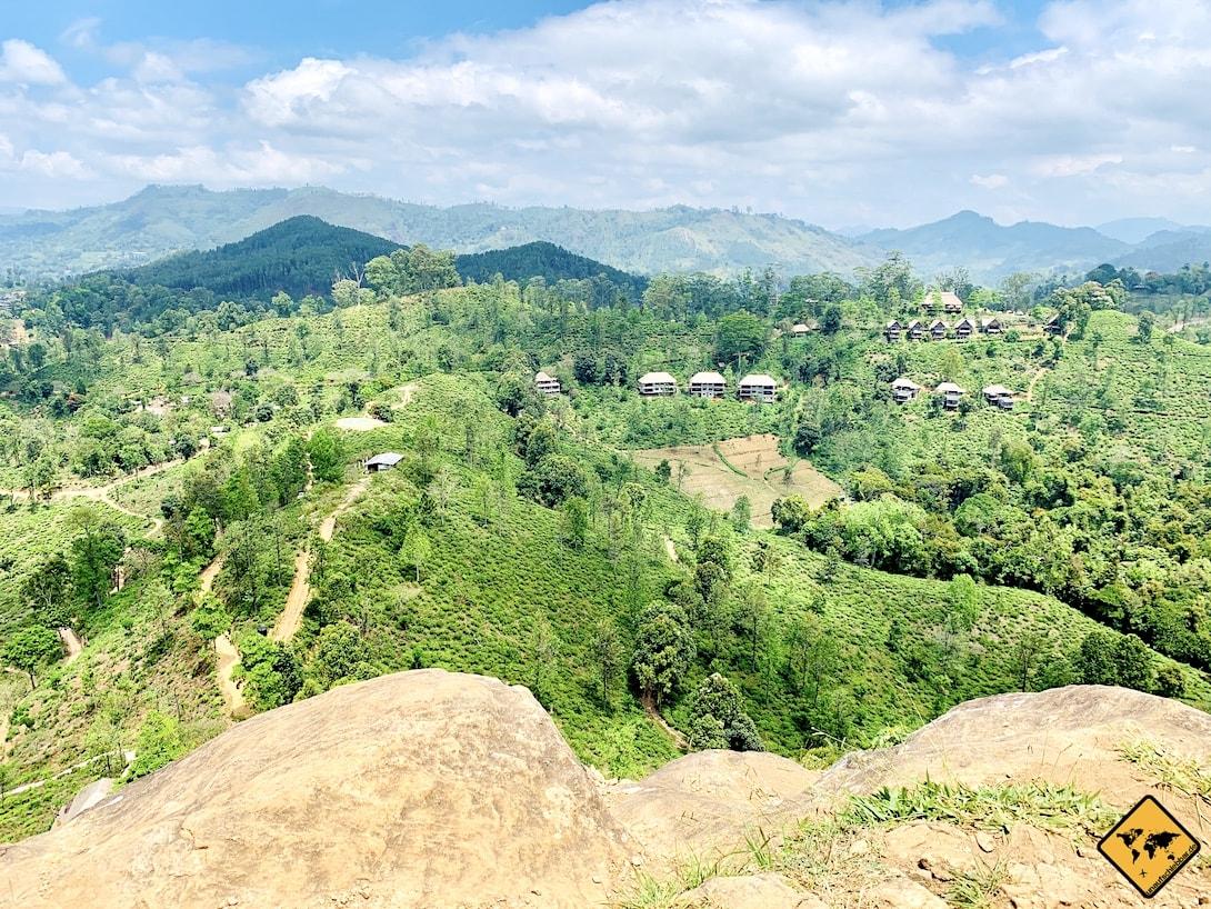 Aussicht ins Grüne Little Adam's Peak