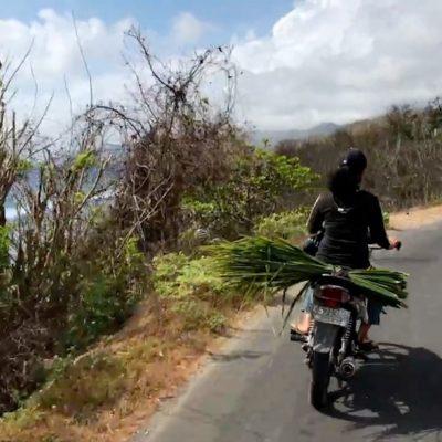 Einer der größten Gefahren beim Auto fahren auf Bali besteht darin, dass Roller oder Transporter ihre Ladung nicht gut sichern und diese schnell auf der Fahrbahn landen kann
