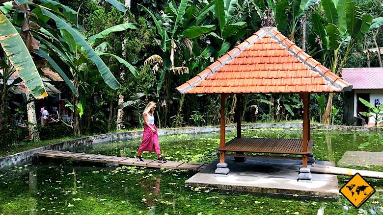 Bali Ausflüge von Ubud