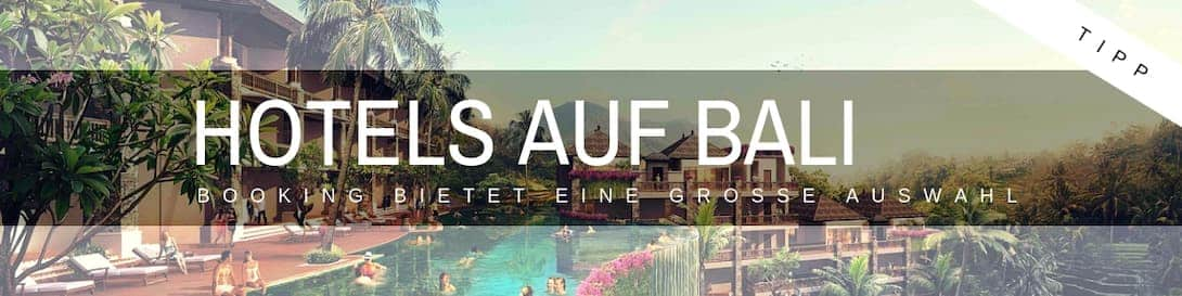 Bali Hotels Hostels Homestays