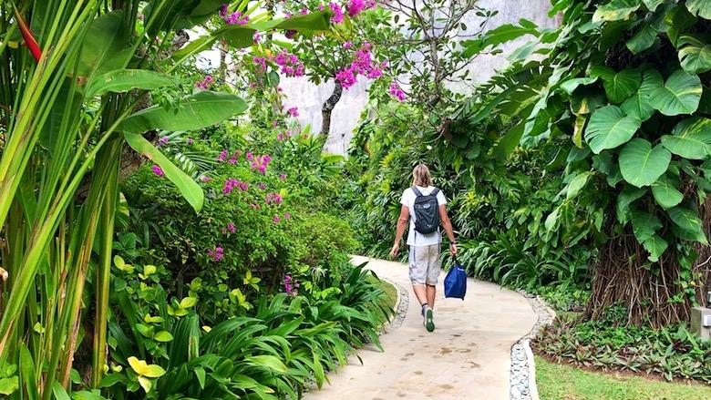 Bali Regenzeit Erfahrung grüne Natur