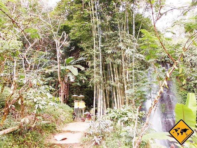 Bali Sehenswürdigkeiten top 10 Blahmantung Wasserfall Eingang
