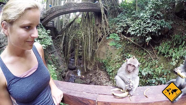Bali Sehenswürdigkeiten top 10 Monkey Forest Ubud
