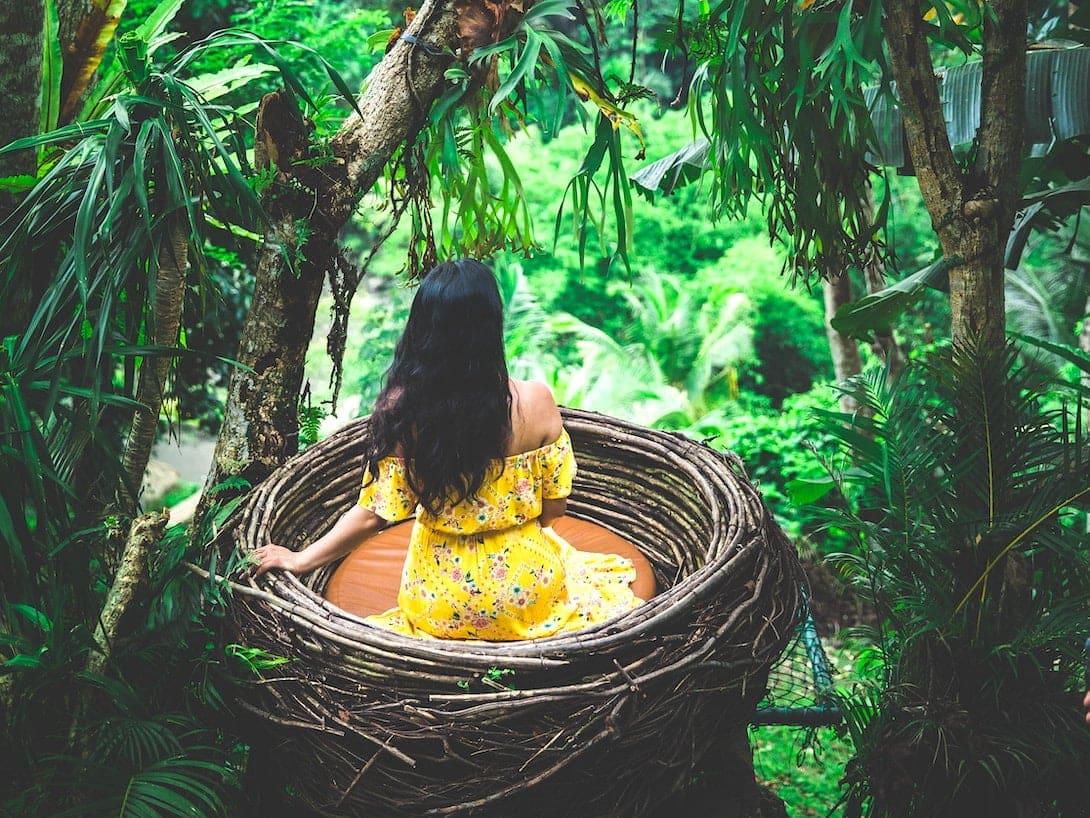 Bali Swing Vogelnest