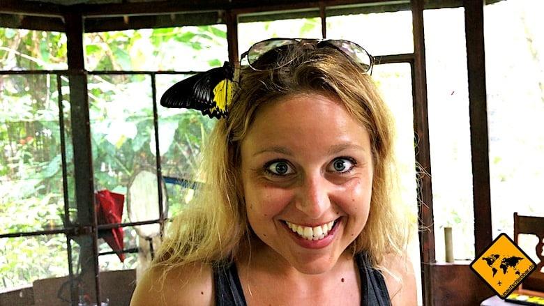 Bali Tagestouren Bali Butterfly Park