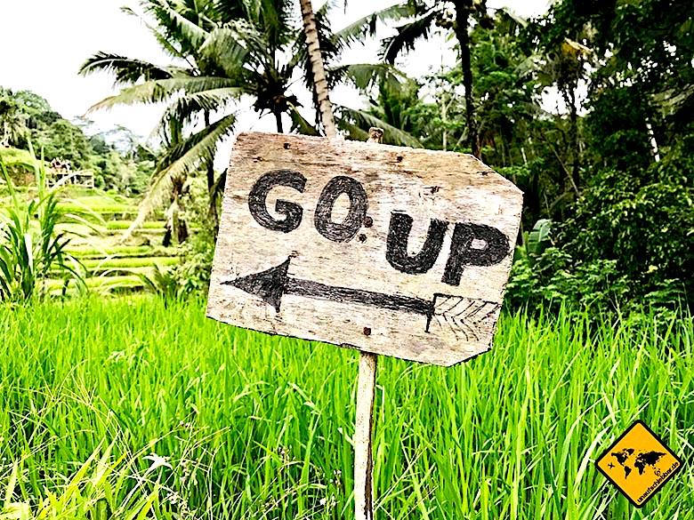 Bali Tagestouren Tegalalang Reisterrassen