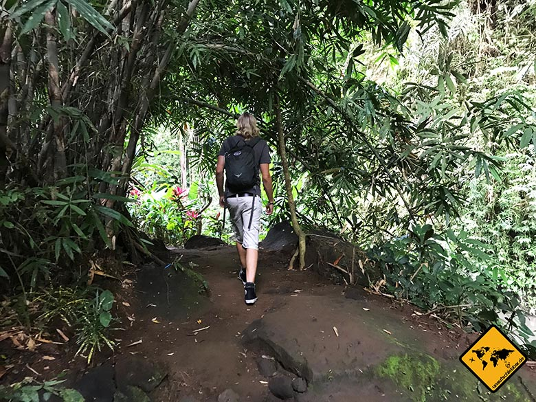 Bali Wasserfälle Tibumana Weg