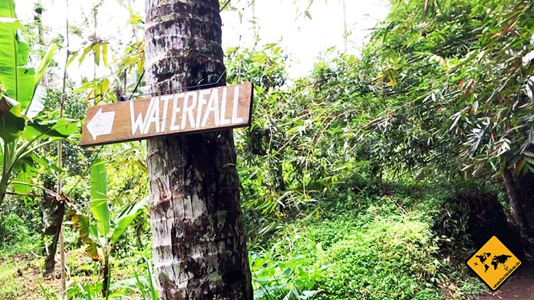 Bali Wasserfälle