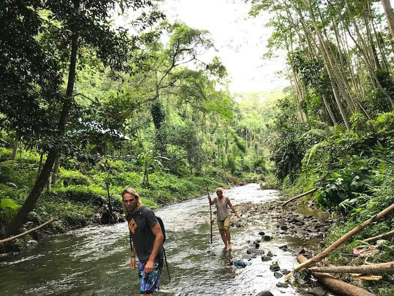 Bali in der Regenzeit Dschungel