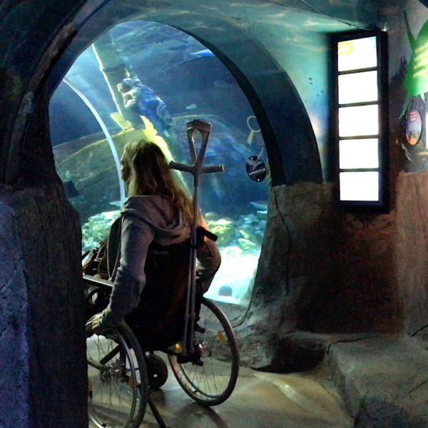 Barrierefreiheit Rollstuhl Sea Life Oberhausen