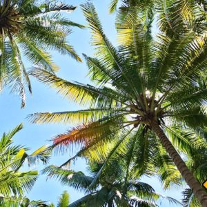 Beste Reisezeit Lombok