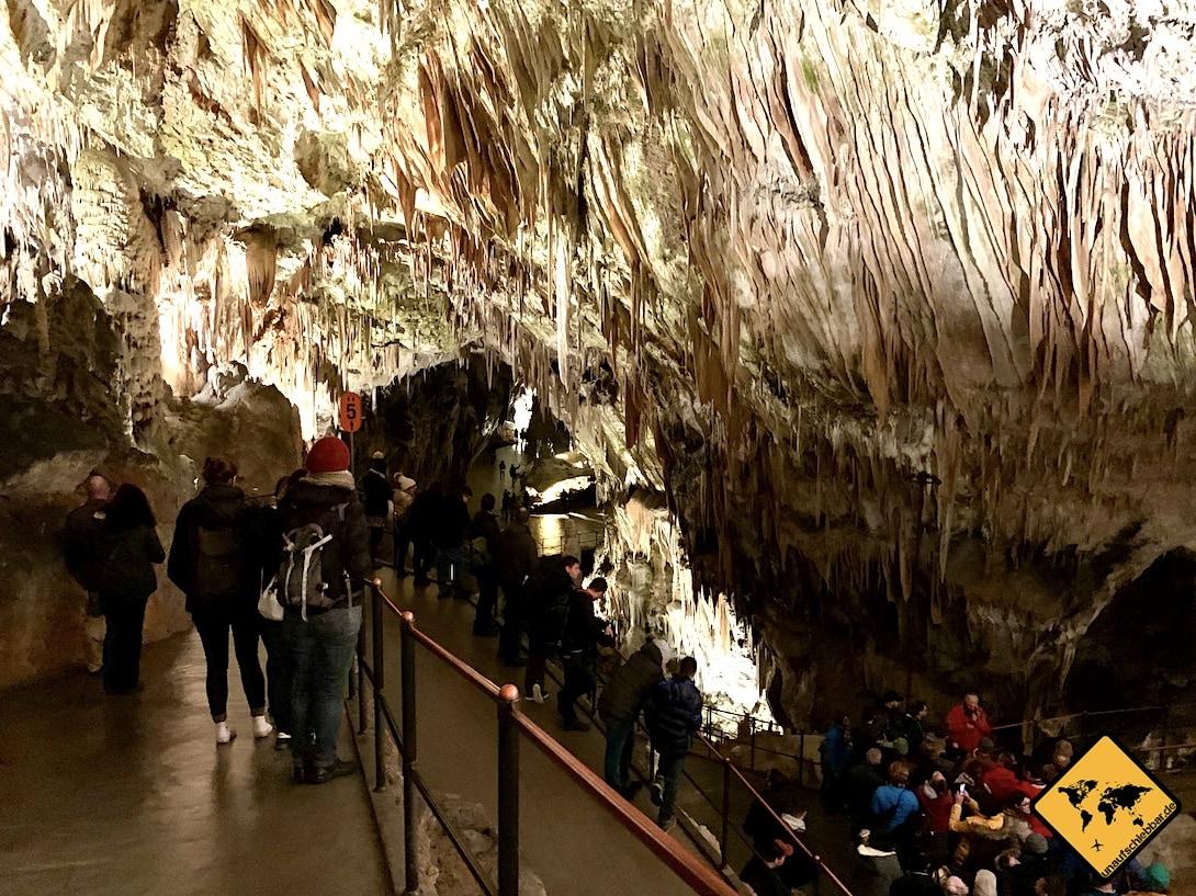 Besuchergruppe Postojna Höhle