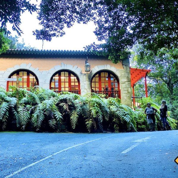 Besucherzentrum Los Tilos