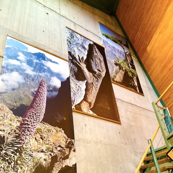 Bilder Besucherzentrum Caldera de Taburiente Nationalpark