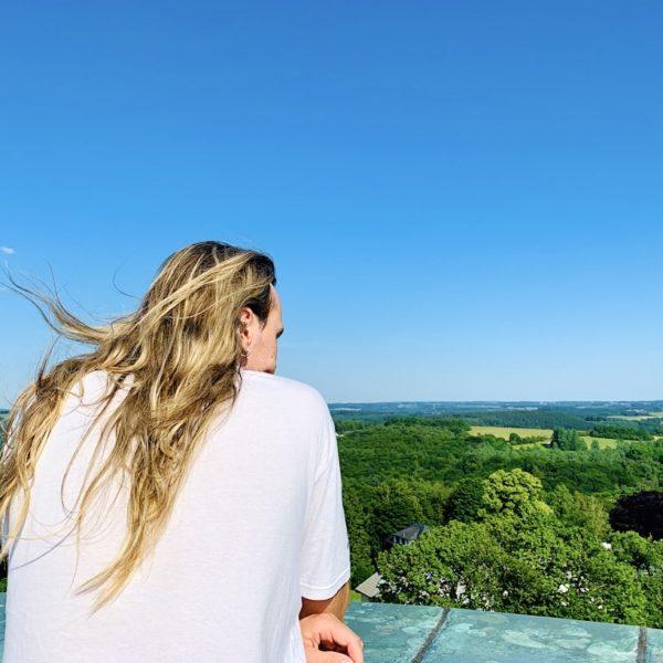Blick ins Grüne Toelleturm