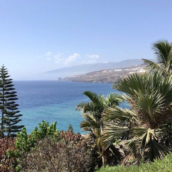 Botanischer Garten Santa Cruz Ausblick Meer