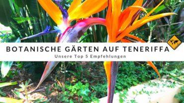 Botanische Gärten auf Teneriffa – Top 5 Empfehlungen