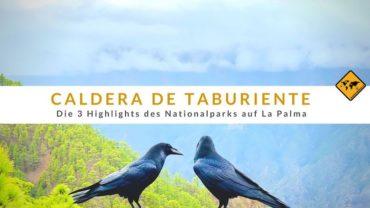 Caldera de Taburiente – Die 3 Highlights des Nationalparks auf La Palma