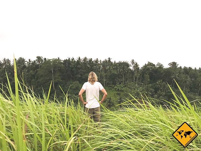 Campuhan Ridge Walk Bali Aussicht