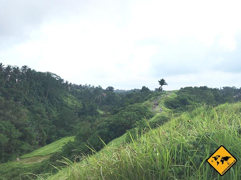 Campuhan Ridge Walk Ubud Natur