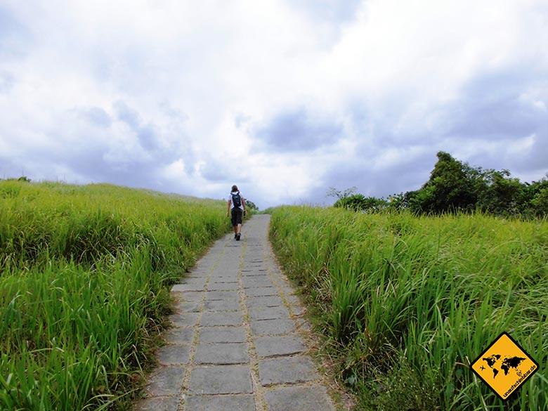 Campuhan Ridge Walk Ubud Wanderung