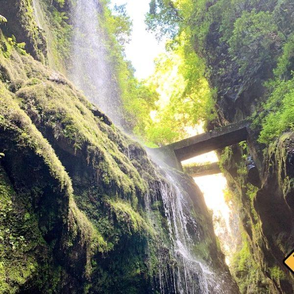 Cascada De Los Tilos La Palma