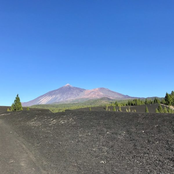 Chinyero Teide Nationalpark