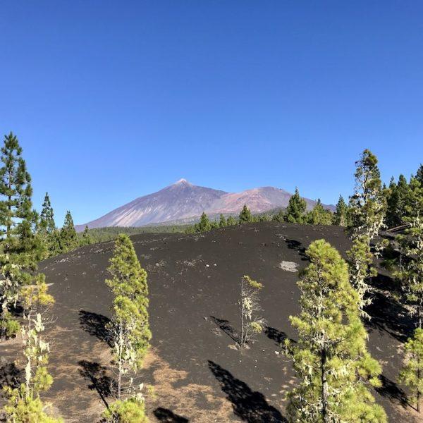 Chinyero Teneriffa Blick Teide