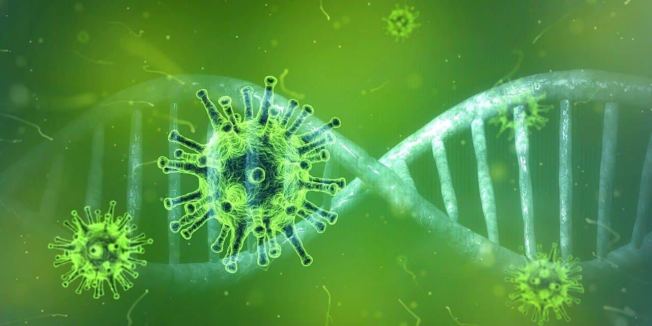 Corona Virus auf Reisen