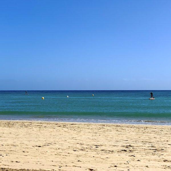 Costa Calma Fuerteventura Stand-up Paddling