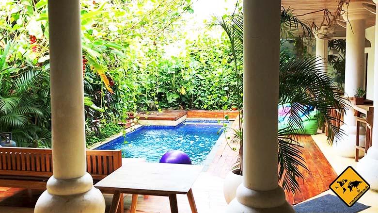Coworking Canggu Dojo Bali Pool