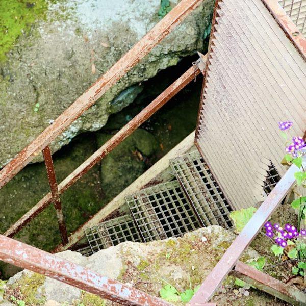 Cueva del Viento Eingang Lavaröhre