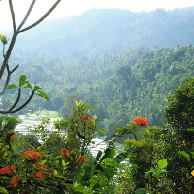 Die Schönheit der Reisfelder und Berge wird dich auf deiner Bali Rundreise mit Sicherheit faszinieren