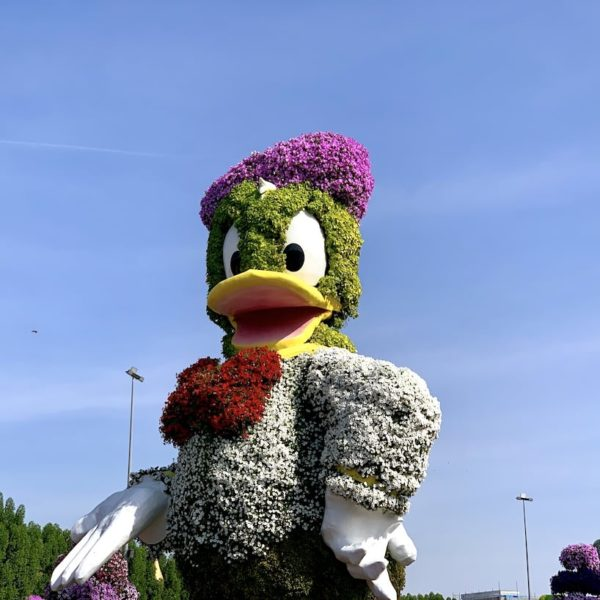 Donald Duck Miracle Garden in Dubai