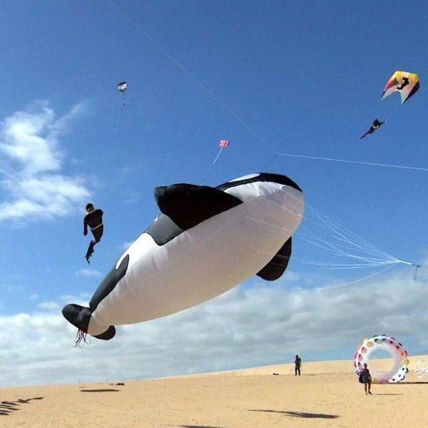 Drachenfest Corralejo Fuerteventura Geheimtipps