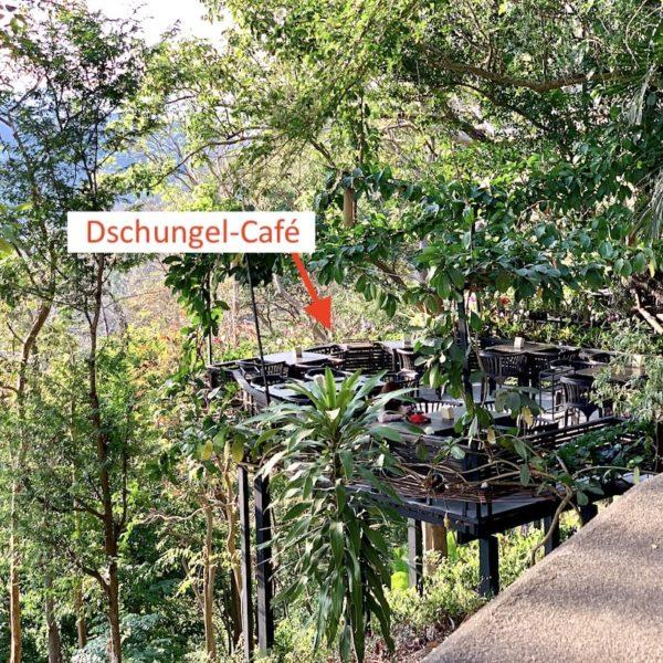 Dschungel Café Rang Hill Phuket City
