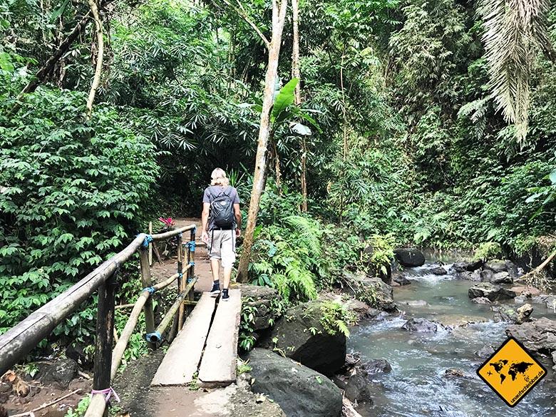 Dschungel-Landschaft Brücke